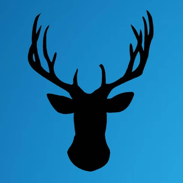 Stag Groups